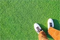 Landscaping Pros of Orange County