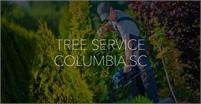 Tree Service Columbia SC