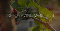 Tree Service Mobile